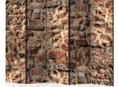 Paraván - Ancient Wall II [Room Dividers]